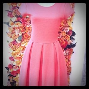 French Connection Coral Pink Flare Dress